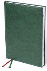 Мирадор в зеленом цвете